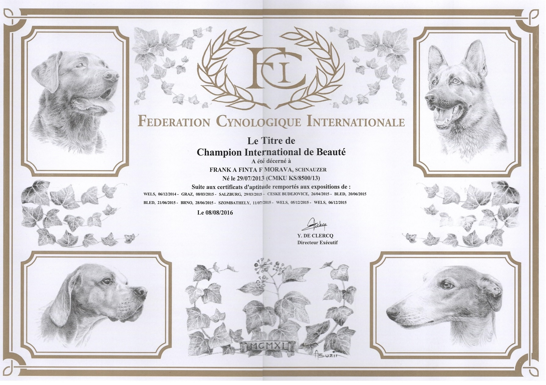 FRANK A FINTA F Morava - C.I.B - INTERCHAMPION